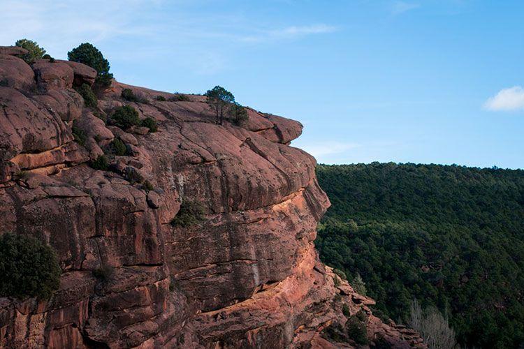 Fotografia de Pinares de ordeno en Albarracín