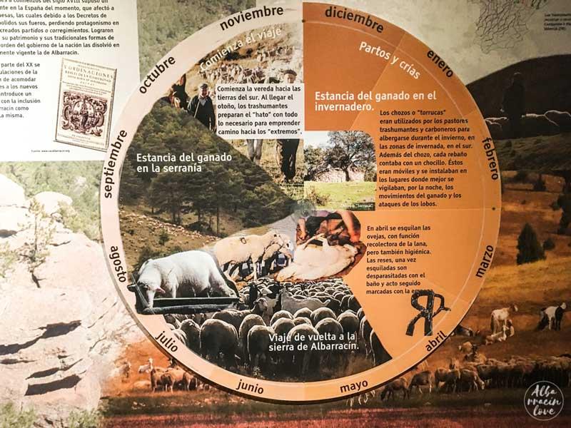 Fotografía del cartel con costumbres ganaderas ovinas.