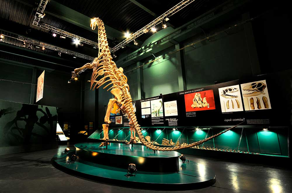 Imagen de Dinopolis con una réplica a tamaño natural del Tastavinsaurus Sanzi