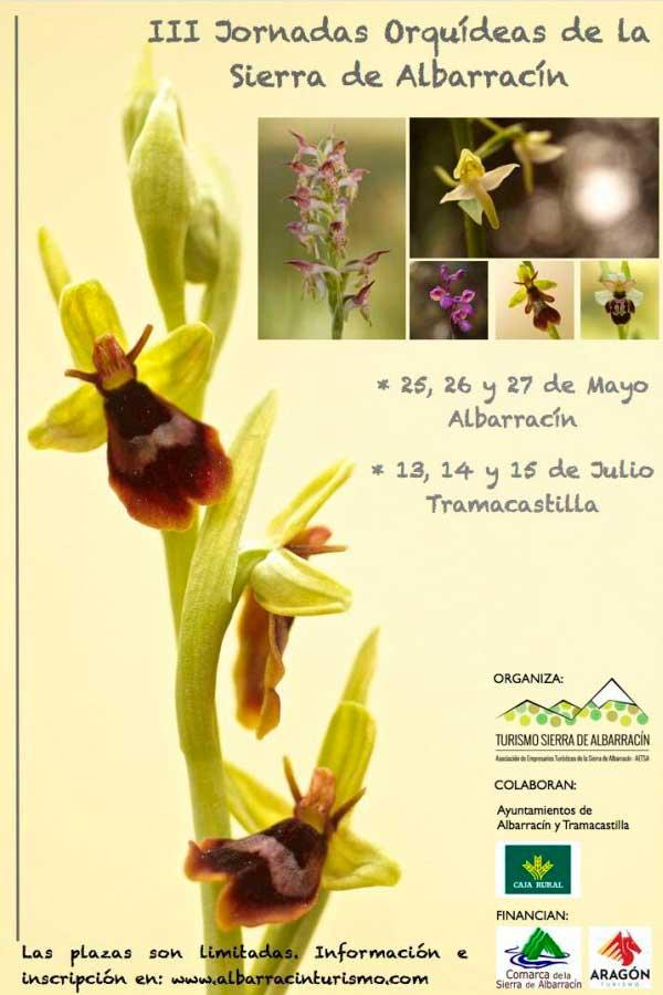 Fotografía Cartel de las Jornadas de Orquídeas