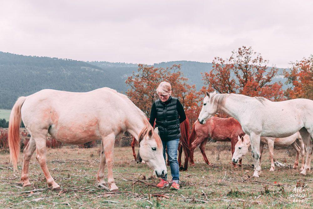 Fotografía del plan ecuestre en la sierra de albarracin