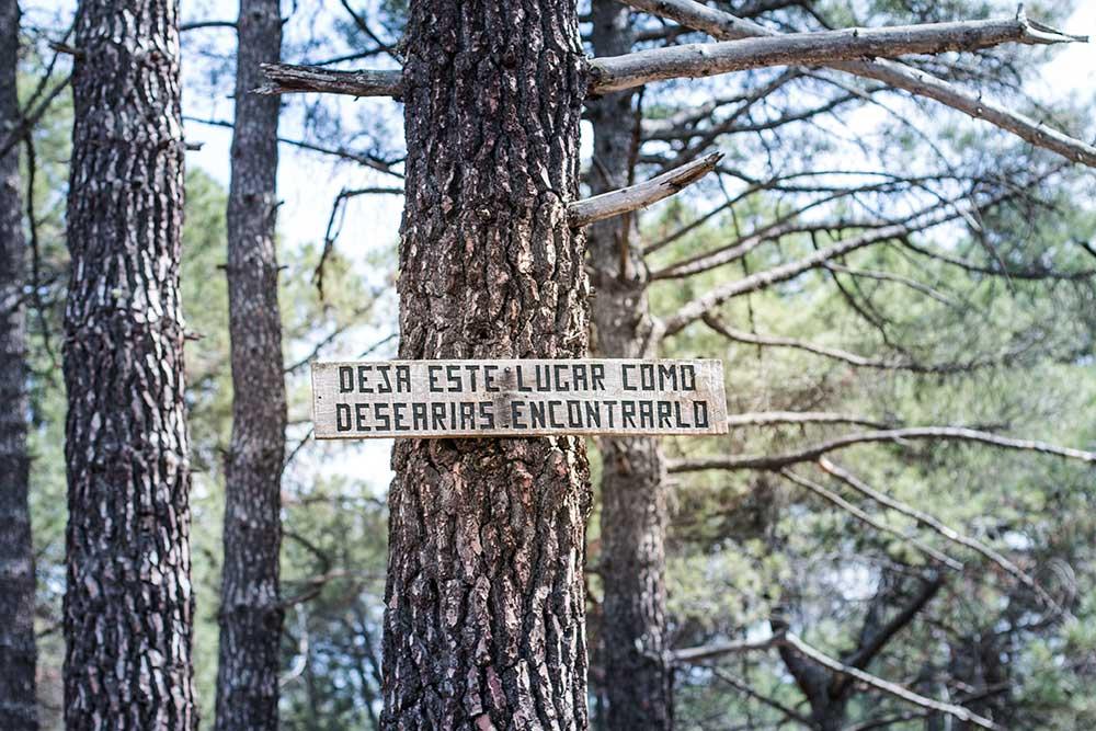 Imagen de un cartel en los pinares de rodeno