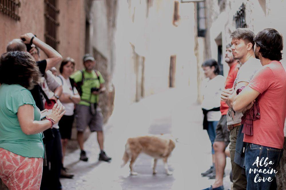 Fotografia de las visitas guiadas en Albarracin por el Andador